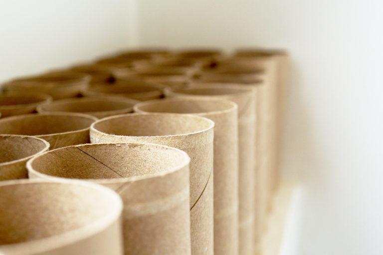 Ruličky od toaletního papíru u nás doma
